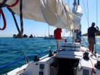 5-day course Southern Cross Yachting by Francis Pantus 11