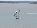 Brisbane to Gladstone finish Southern Cross Yachting