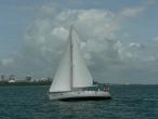 Jeanneau 45 Hasta La Vista Charter Southern Cross Yachting