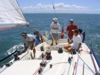 sail-training-on-oceans