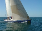 WAGS on Oceans Southern Cross Yachting